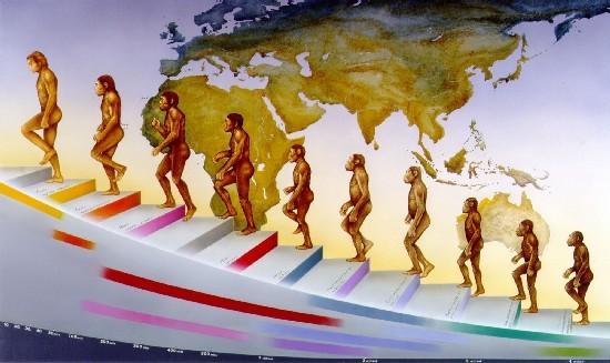 Una rappresentazione dell'evoluzione dell'uomo.